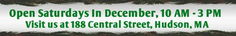 Open Saturdays in December!