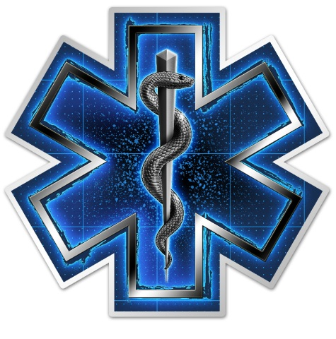 EMS 4 inch Decal