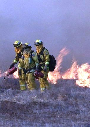 Thomas Fire, Ventura Vol. 2